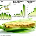 Marché des matières premières agricoles