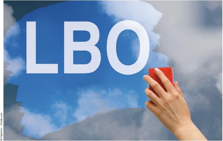 Pourquoi le lbo ne rapporte plus for Entreprise qui rapporte