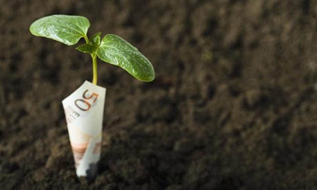 Un label public pour les fonds verts