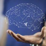 Formation – L'impact des neurosciences pour booster l'apprentissage