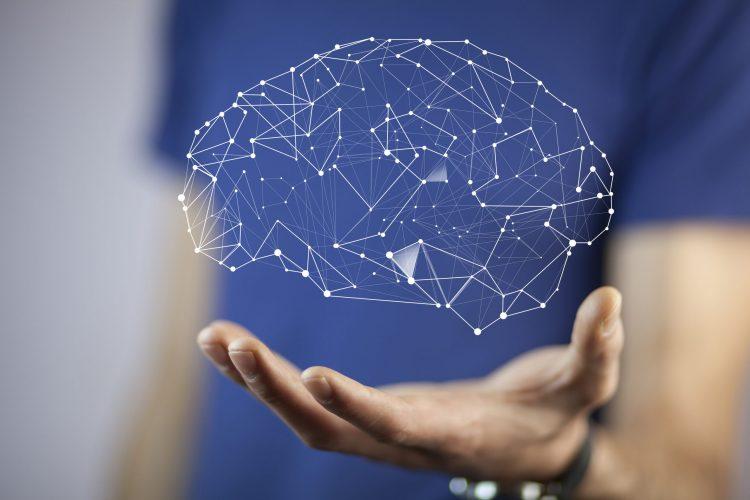 Formation - L'impact des neurosciences pour booster l'apprentissage